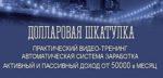 dollarovaya-shkatulka